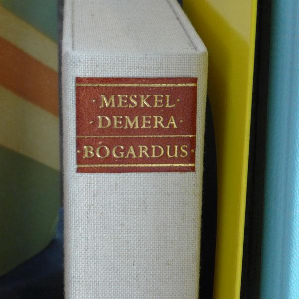Two Ponds Press: Meskel Demera